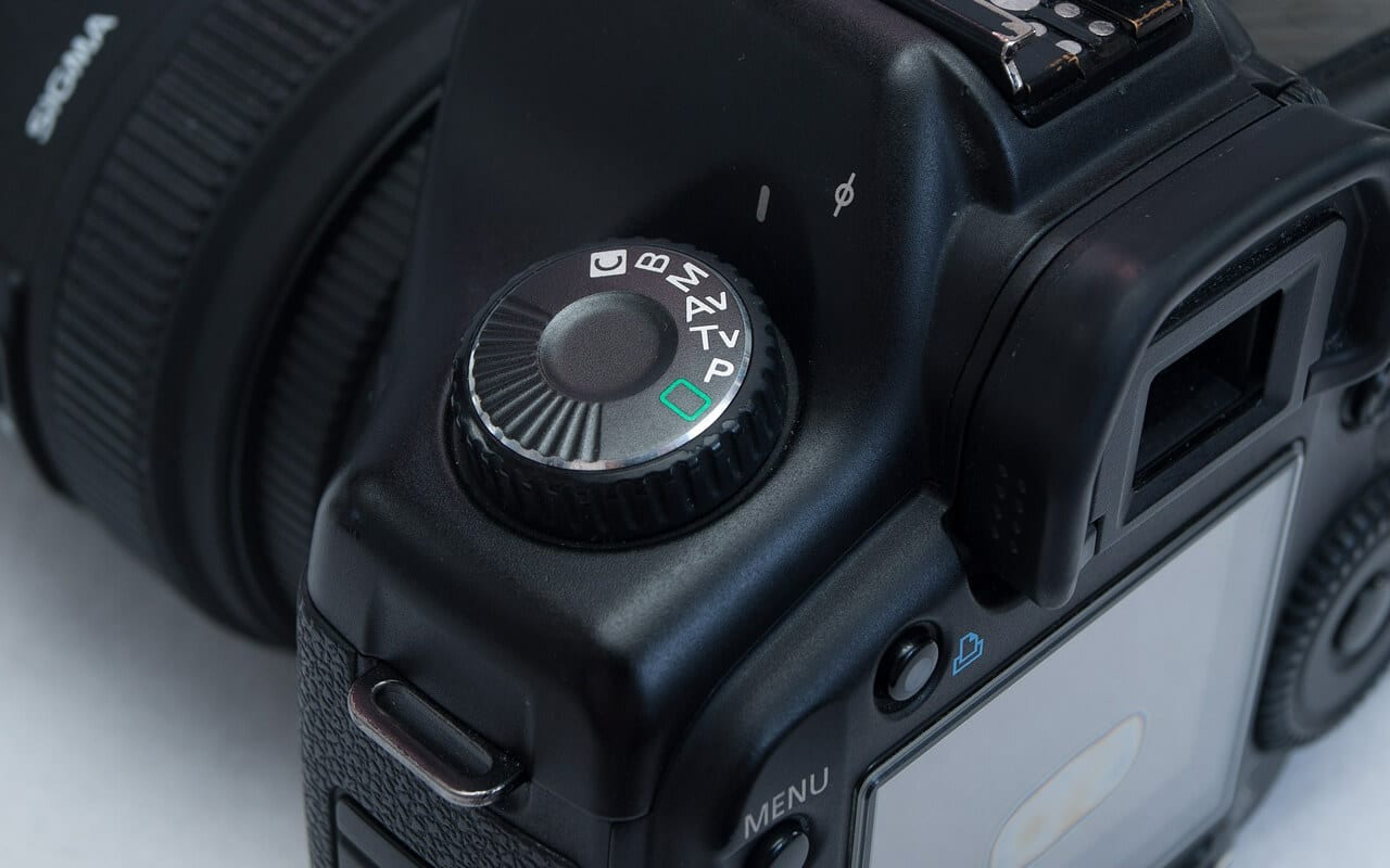 Best Cameras for Macro Photography