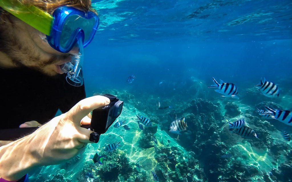 Best Cameras for Snorkeling